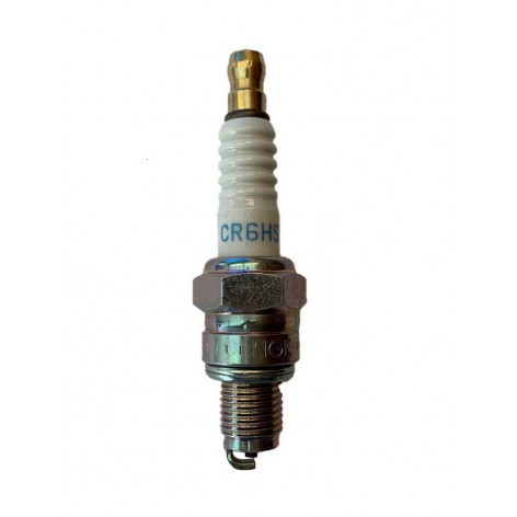 Spark plug for Ozeam 6cv & Ozeam 8cv